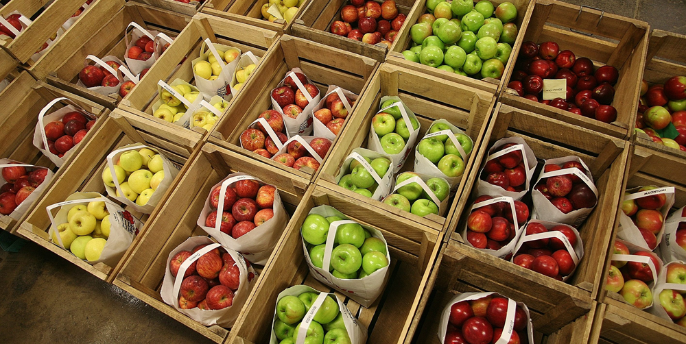 5 Fall Activities in Chicago   Apple Picking   Hotel EMC2, Autograph Collection
