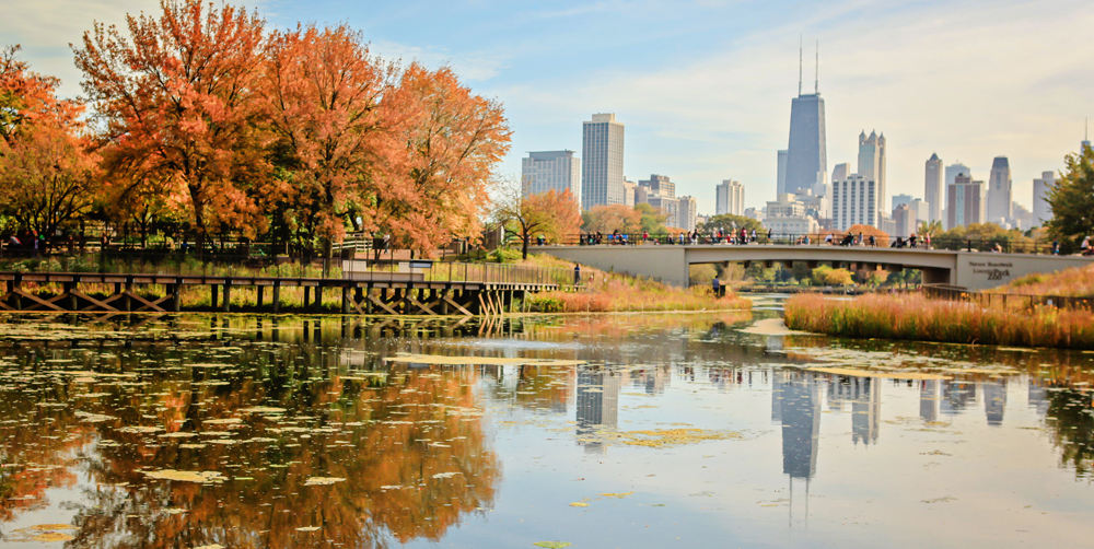 5 Fall Activities in Chicago | Hotel EMC2, Autograph Collection