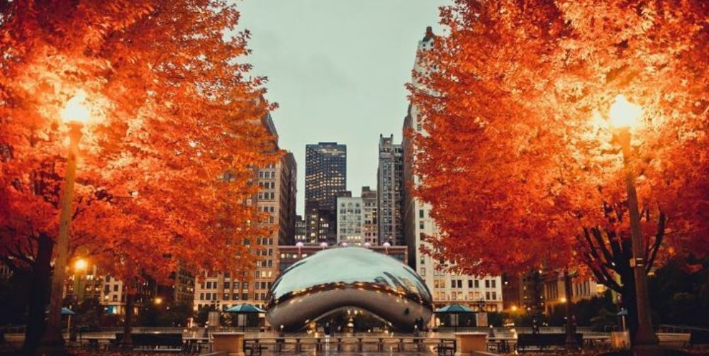 Cozy Things to Do in Chicago This Fall | Hotel EMC2